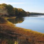 Georges River Land Trust's Riverview Hayfields Preserve.