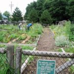 Community gardens in Portland are growing. This year locals deemed low income are getting preference on the waiting list.