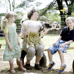 Audrey Tripp and her children, Elijah, 8, and Adele, 7, play with Cecilly, a baby Nigerian dwarf goat at their Auburn home. The Tripp family was given permission from the city to keep two goats as pets. But the city is now saying the family can not keep the goats because there's an ordinance against it.