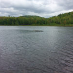 Maine game wardens on Thursday recovered the body of a Porter man who did return from a fishing trip on Wednesday. Duane Day Sr., 53, was located in Plain Pond beneath his boat by game warden divers in nine feet of water.