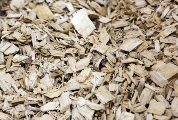 Wood chips are seen during a tour at the University of Maine Technology Research Center in Old Town Wednesday. The Massachusetts company Biofine demonstrated its pilot biorefinery project in the former Old Town Fuel and Fiber mill.