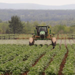 Twenty-seven Maine communities have restrictions on pesticide use. Gov. Paul LePage wants to overrule them.