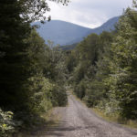 The northern entrance road to the Katahdin Woods and Waters National Monument, seen here last August, is the only road to the monument open now.