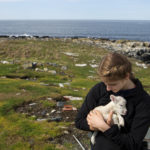 NASH ISLAND, Maine -- 05/17/2017 - Evie Wakeman, 15, holds an abandoned lamb her father, Alfie, found on Little Nash Island Wednesday. The pair brought the lamb to Big Nash Island to start the process of nursing it back to health. The family takes care of approximately 150 sheep spread between Little and Big Nash Islands. Ashley L. Conti | BDN