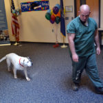Melvin follows Norman Palmer after demonstrating some of the commands Palmer taught him as part of Two Bridges Regional Jail's new dog obedience program.