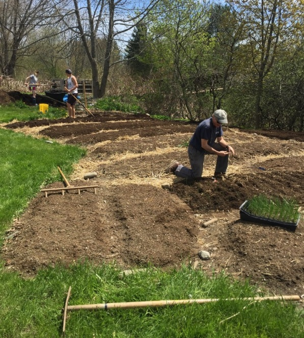 John Jemison, foreground, a professor with the University of Maine Cooperative Extension, helped to found the Orono Community Garden 14 years ago. Every summer, vegetables from the garden are delivered to between 55 and 60 low-income area seniors.