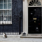 Larry the Downing Street cat sits outside Number 10, in London, Britain, June 9, 2017.