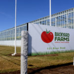 Backyard Farms is a Maine tomato company that produces tomatoes year-round in greenhouses.