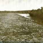 Penobscot River rafting: an adventure worth sharing