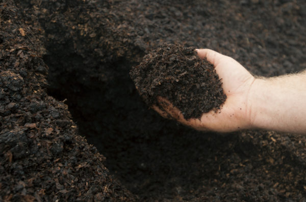 Scientists have discovered a new kind of antibiotic – buried in the dirt. Tests in animals show that it is effective against drug-resistant bacteria, and it could lead to desperately needed treatments for deadly antibiotic-resistant infections.