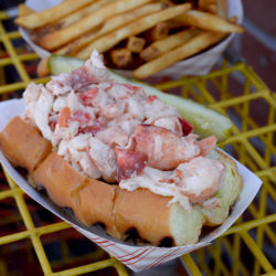 A lobster roll at Charlotte's Legendary Lobster Pound in Southwest Harbor.
