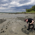 LAMOINE, Maine -- 06/21/2017 - BDN coastal reporter Nick McCrea cleans off his hoe while digging for bloodworms with Cameron Brann in a mudflat on the Jordan River in Lamoine Wednesday. Brann, who is still new to digging, digs year round and hopes to dig around 500 worms a day. Ashley L. Conti | BDN