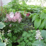 Tour five amazing gardens on the July 16 Gardens in the Watershed tour.