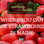 Farmers: Late-blooming berries doing OK