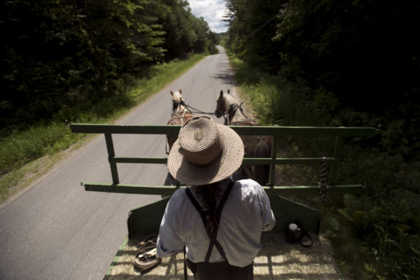 Kenneth Copp of Thorndike drives a wagon to a field to pick up hay for his animals. Copp, 57, spent decades living in old-order Mennonite and Amish communities in several states. He started questioning his religious beliefs and in 2012 left the Amish church. He was shunned by the Amish community and eventually lost his family. He says aspects of his new life are very hard, but he is happier and more at peace now.