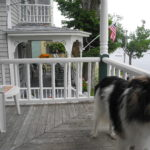 A dog gets up Saturday from a brief nap on the porch at Lincoln Cottage in in Bayside Village.