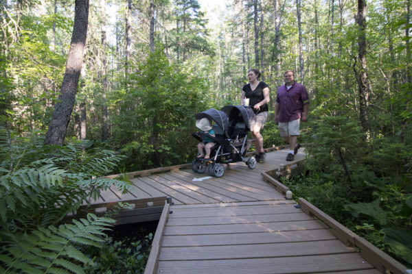 Nadia Winters and Curt Carter walk along the Orono Bog Boardwalk on July 5, with their 11-month-old son, Emmett, in a stroller.