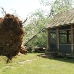 National Weather Service officials say a microburst is likely to blame for recent property damage in Kingfield.