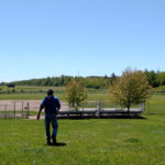 Sheldon Snell walks through the Walsh Field Recreation Area in Belfast, where he's the groundskeeper, on June 7.
