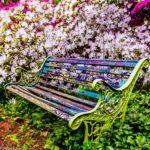"""Garden Bench"", photograph by Michael Fillyaw."