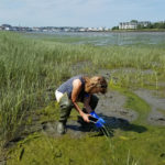 Casco Baykeeper Ivy Frignoca checks an algae bloom in Mill Cove, South Portland.