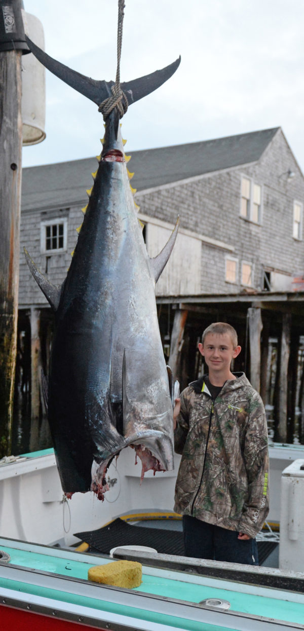 Myles Wotton with the tuna he caught Monday aboard his father's fishing boat, the Red Lady. The fish dressed out at 381 pounds.