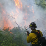 Maine Forest Ranger Zach Monroe dousing the wildfire near Brandy Pond.