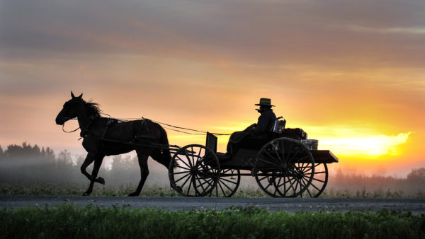 amish community celebrates a decade in central aroostook homestead