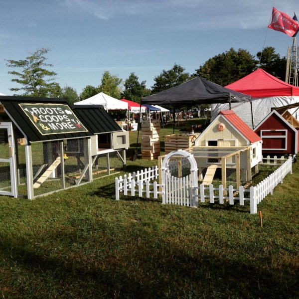 Augusta Couple Turns Passion For Homesteading Into Small Business