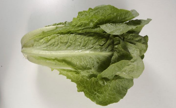 More Romaine Outbreak Cases, But End May Be Near