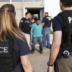 immigration agents arrest 114 - 250×250
