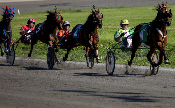 Local sports: Harness racing, golf results — Harness Racing
