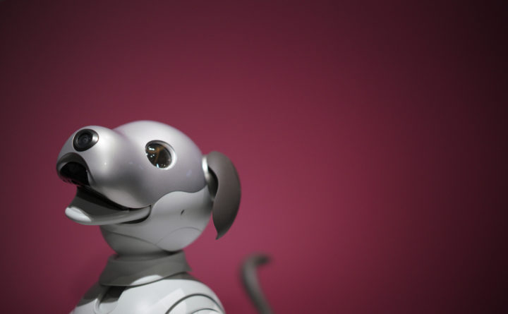 Aibo the robot dog will melt your heart with mechanical