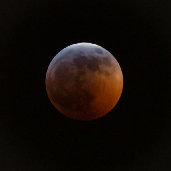 Photo of the moon last night