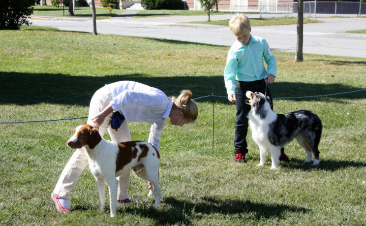 Penobscot Valley Kennel Club AKC Fun Match — User Submitted