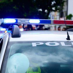 Report: Men with guns cut down tree, block driveway to quarantine Vinalhaven residents